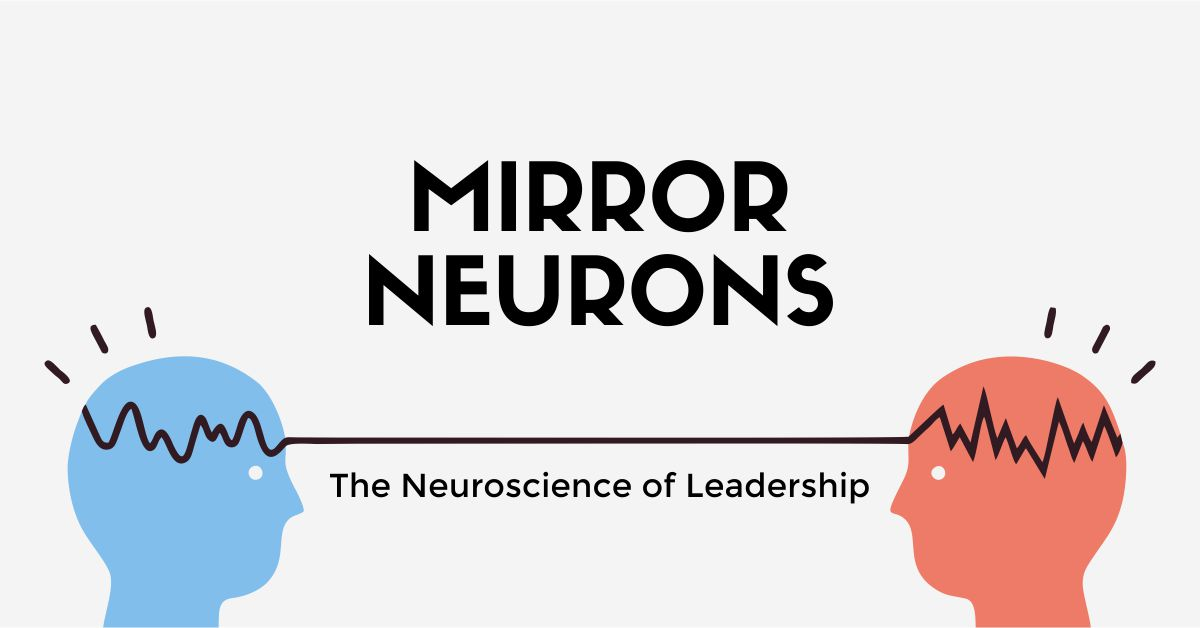 mirror neurons featured